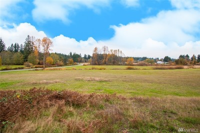 Snohomish County Residential Lots & Land For Sale: 64 256th St NE