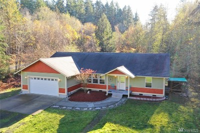 Shelton Single Family Home For Sale: 1241 E Benson Loop Rd