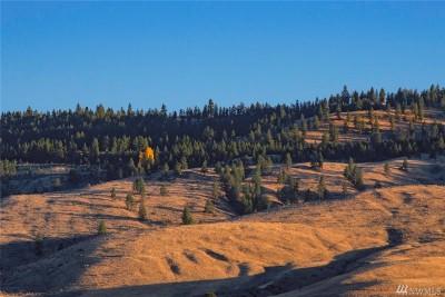 Chelan, Chelan Falls, Entiat, Manson, Brewster, Bridgeport, Orondo Residential Lots & Land For Sale: Whitley Canyon Rd