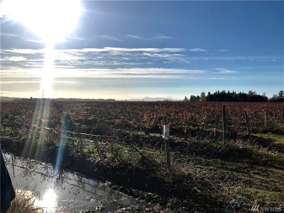 Skagit County Farm For Sale: Chuckanut Dr