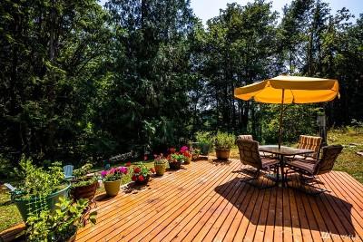 Carnation Single Family Home For Sale: 6817 Tolt River Rd NE