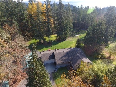Tenino Single Family Home For Sale: 16846 Mima Acres Dr SE