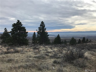 Residential Lots & Land For Sale: 1 Sheep Creek Rd