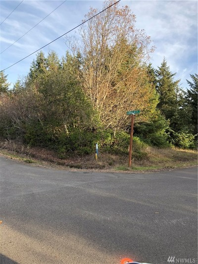 Residential Lots & Land For Sale: 131 Cloquallum St SE