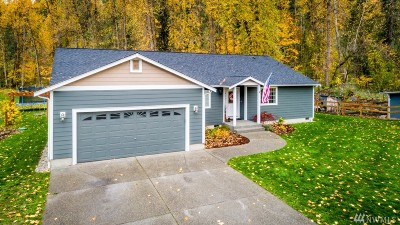 Orting Single Family Home For Sale: 407 Calistoga St E