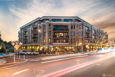 Bellevue Condo/Townhouse For Sale: 10047 Main St #407