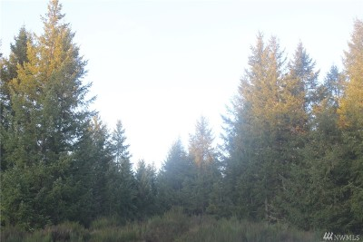 Residential Lots & Land For Sale: 26407 173rd St E