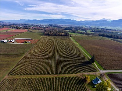 Lynden Residential Lots & Land For Sale: Van Buren Rd