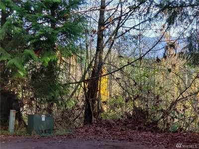 Residential Lots & Land For Sale: 33115 37th Ave NE