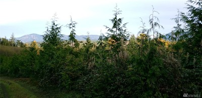 Stanwood Residential Lots & Land For Sale: 316th St