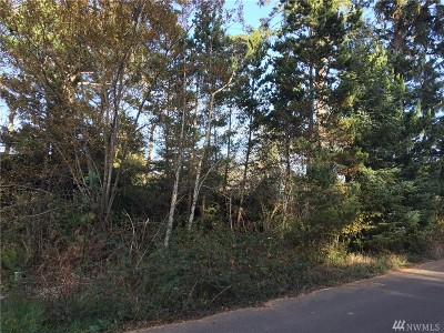Residential Lots & Land For Sale: 1209 234th Place