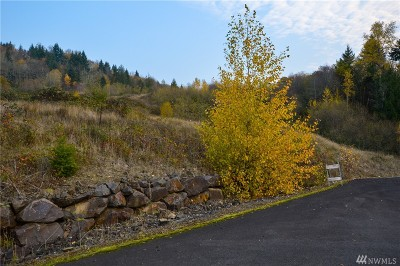 Residential Lots & Land For Sale: 191 Windy River