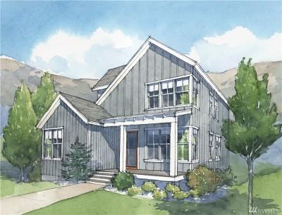 Chelan County Single Family Home For Sale: 127 Bobcat Lane