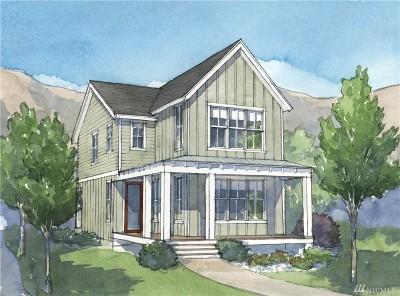 Chelan County Single Family Home For Sale: 164 Bobcat Lane