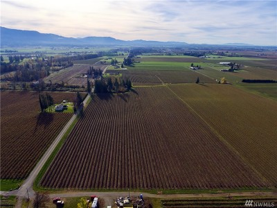 Lynden Residential Lots & Land For Sale: 9819 Van Buren Rd
