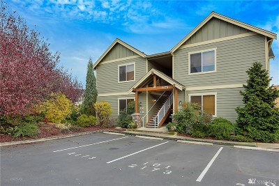 Whatcom County Condo/Townhouse For Sale: 2173 Sunnybrook Lane #101
