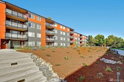 Seattle Condo/Townhouse For Sale: 7021 Sand Point Wy NE #B110