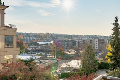 Kirkland Condo/Townhouse For Sale: 225 4th Ave #A301