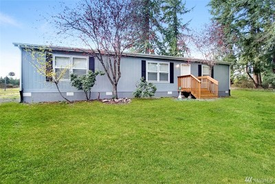 Tenino Single Family Home For Sale: 17045 Mima Acres Dr SE