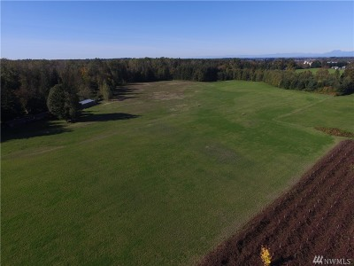 Whatcom County Farm For Sale: 3626 Back Acre Rd