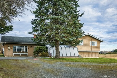 Bellingham Single Family Home For Sale: 1854 E Smith Rd