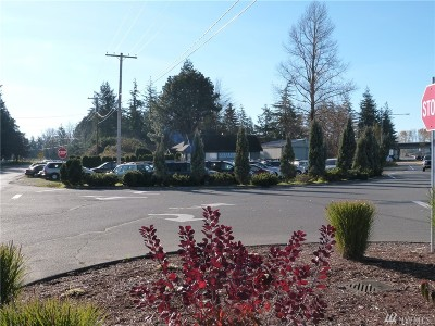 Ferndale Commercial For Sale: 5987 Portal Wy