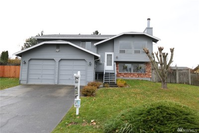 Ferndale Single Family Home For Sale: 6045 Sunshine Dr