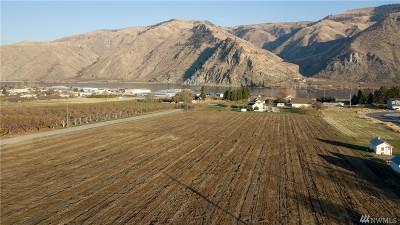 Chelan, Chelan Falls, Entiat, Manson, Brewster, Bridgeport, Orondo Residential Lots & Land For Sale: 2137 Cammack Ave