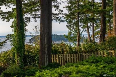 Oak Harbor Single Family Home For Sale: 1336 Polnell Shores Dr