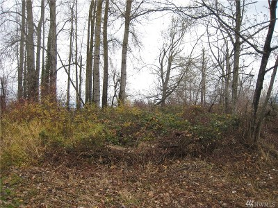 Sumas Residential Lots & Land For Sale: 1st St