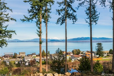 Camano Island Single Family Home For Sale: 337 Tillicum Wy