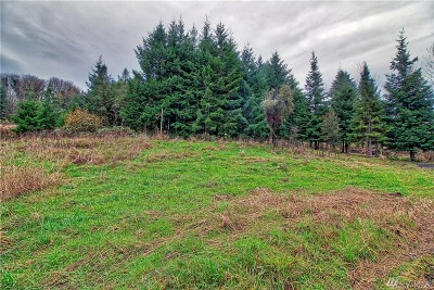Residential Lots & Land For Sale: 1012 Yakima St
