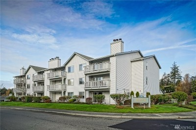 Anacortes, La Conner Condo/Townhouse For Sale: 1510 Skyline Way #A203