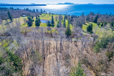 Blaine Residential Lots & Land For Sale: Birch Point Rd