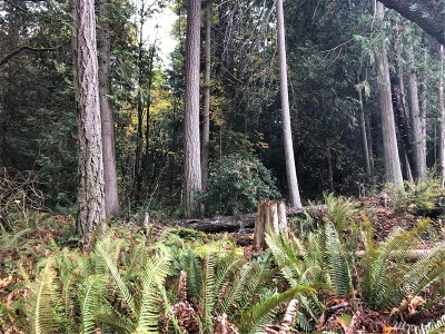 Point Roberts Residential Lots & Land For Sale: 1861 Austin Road