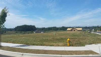 Ferndale WA Residential Lots & Land For Sale: $237,700