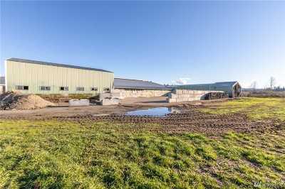 Whatcom County Farm For Sale: 1413 E Pole Rd.