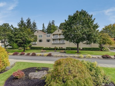 Issaquah Condo/Townhouse For Sale: 4152 Providence Point Dr SE #203