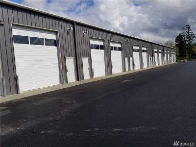 Blaine Commercial For Sale: 2748 Peace Portal Drive