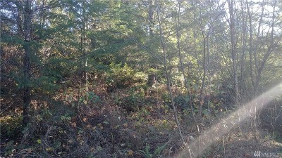 Residential Lots & Land For Sale: 13417 176th Ave NW