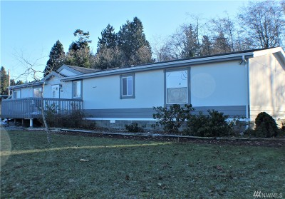 Whatcom County Single Family Home For Sale: 4751 Alderson Rd