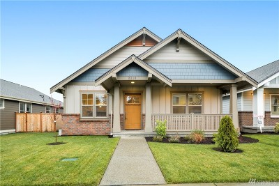 Olympia Single Family Home For Sale: 2210 Park View St NE