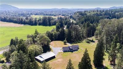 Skagit County Single Family Home For Sale: 27741 State Route 20