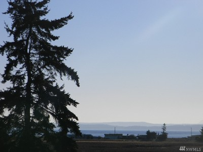 Coupeville Residential Lots & Land For Sale: Halsey Dr