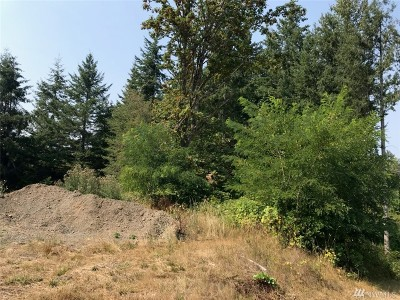 Residential Lots & Land For Sale: 1933 Mt Brynion Rd