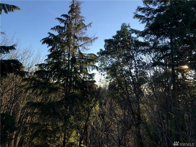 Mercer Island Residential Lots & Land For Sale: 47 86th Ave SE