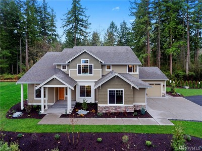 Gig Harbor Single Family Home For Sale: 9622 64th St NW