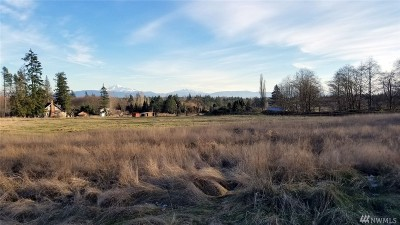 Lynden Residential Lots & Land Sold: 25 H Street Rd