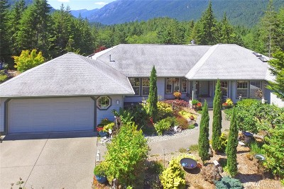 Brinnon Single Family Home For Sale: 222 Sickel Loop Rd
