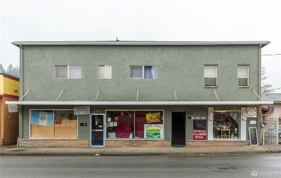 Mason County Commercial For Sale: 218 N First St